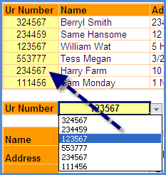 Excel Index and Match Functions