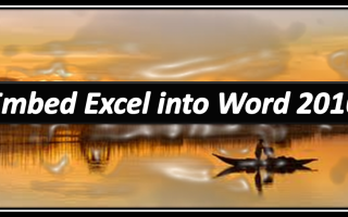 excel word