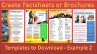 factsheets example 2