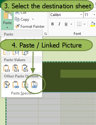 excel linked picture